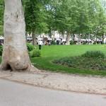 Savez nezaposlenih Hrvatske - Dani udruga 2013 - photo 16 150x150 - Savez nezaposlenih Hrvatske – Dani udruga 2013